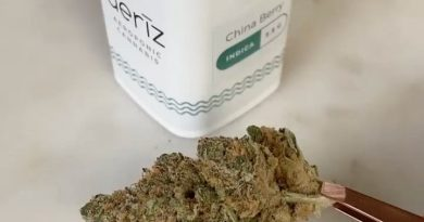 china berry by aeriz strain review by upinsmokesession