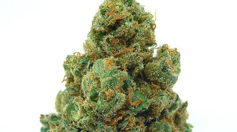 clementine by pistil point strain review by eugene.dispensaries