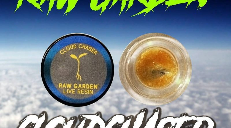 cloud chaser live resin by raw garden concentrate review and art by herbtwist