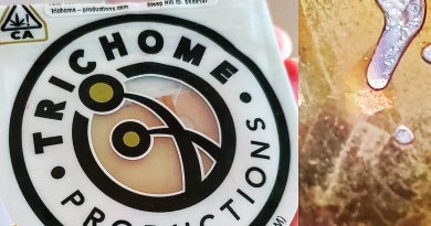 forbidden fruit shatter by trichome productions concentrate review by herbtwist
