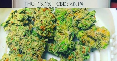 gorilla cookies from liberty health sciences strain review by sticky_haze420gorilla cookies from liberty health sciences strain review by sticky_haze420