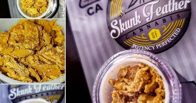 ruby slippers crumble by skunk feather concentrate review by herbtwist