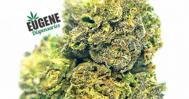 whitaker blues by orekron strain review by eugene.dispensaries