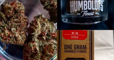 xj-13 by humboldt's finest strain review by herbtwist