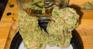 banana og by kings garden strain review by trunorcal420 3
