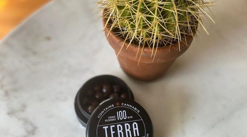 dark chocolate espresso beans terra bites by kiva edible review by upinsmokesession