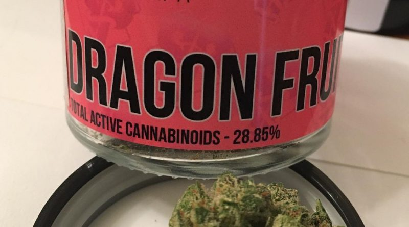 dragon fruit by pearl pharma strain review by trunorcal420