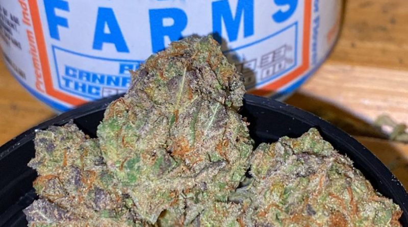 g-loc by rio vista farms strain review by trunorcal420