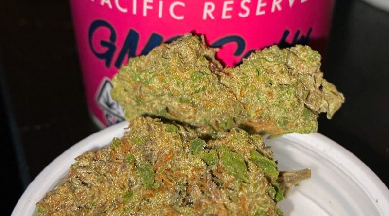 gmo cookies by pacific reserve strain review by trunorcal420