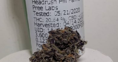 hypnotoad by headrush hill farms strain review by pdxstoneman