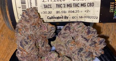 onion breath by high grade farms strain review by trunorcal420