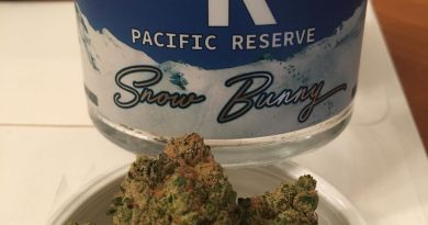 snow bunny by pacific reserve strain review by trunorcal420
