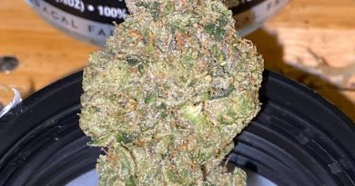 sonoma cake by floracal farms strain review by trunorcal420