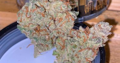 thc bomb by grizzly peak strain review by trunorcal420