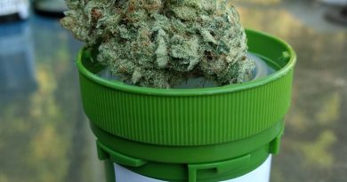 chemical sunset by surfr select strain review by pdxstoneman