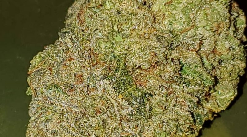 full metal jacket from rise cannabis strain review by strain_games 2