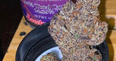 ice cream cake by sweetwater pharms strain review by trunorcal420