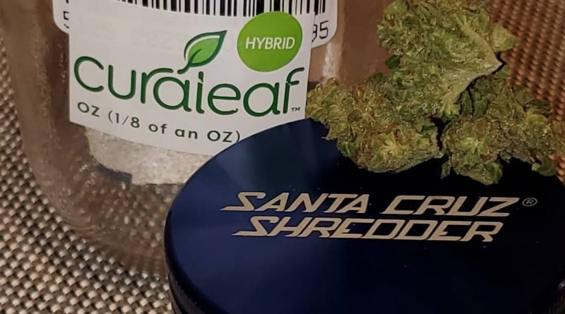 la woman from curaleaf strain review by strain_games