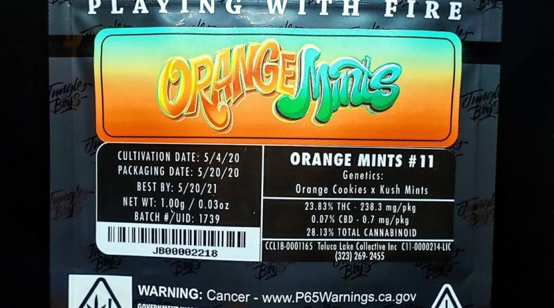 orange mints by jungle boys strain review by thefirescale