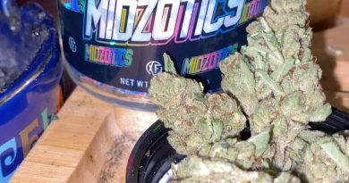 platinum by midzotics strain review by trunorcal420 3