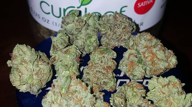 queen of soul from curaleaf strain review by strain_games