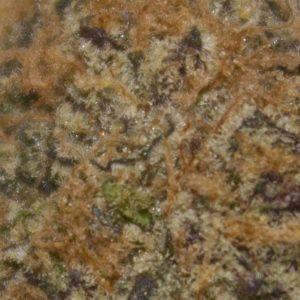 black cherry zkittlez by THE TENco strain review by bigwhiteash 2