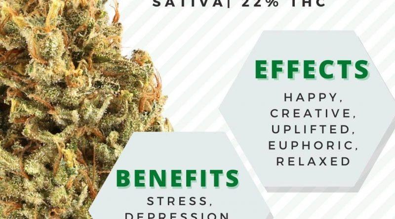 black jack by grow ohio strain review by ohio_marijuana