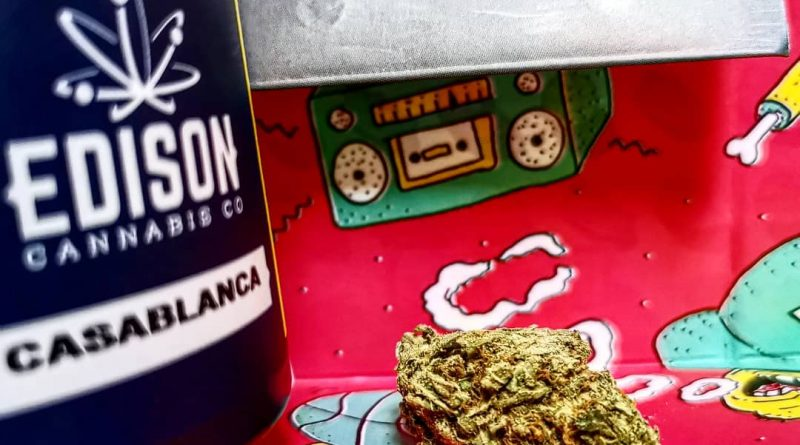 casablanca by edison cannabis co strain review by cannasteph