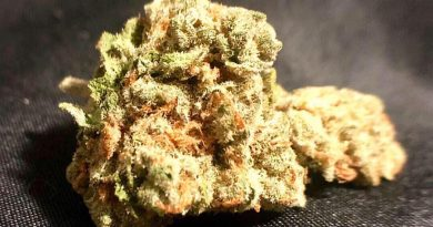 green crack by truflower strain review by shanchyrls