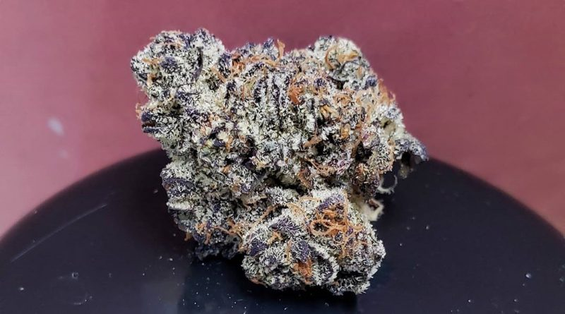 italian ice by 5 points la strain review by thefirescale 3
