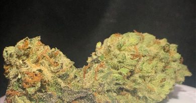 la confidential by truflower strain review by shanchyrls