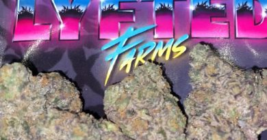 mochi by lyfted farms strain review by trunorcal420
