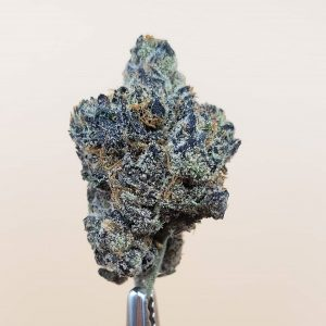 mr. sandman by connected cannabis co strain review by thefirescale 2
