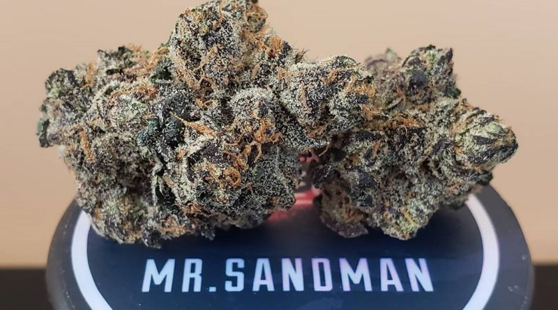 mr. sandman by connected cannabis co strain review by thefirescale 3