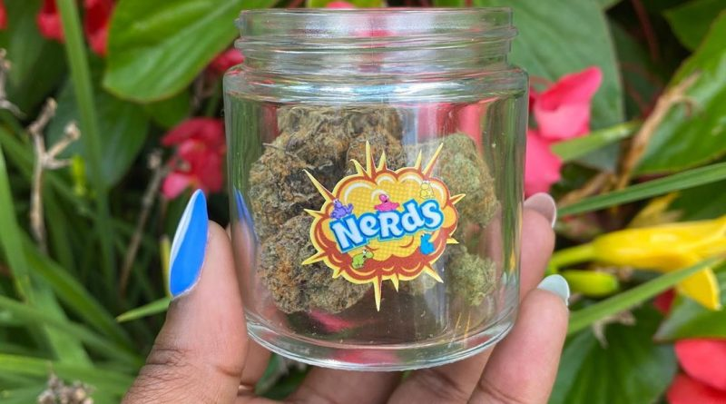 nerds by oregon microwgrowers guild strain review by upinsmokesession 2