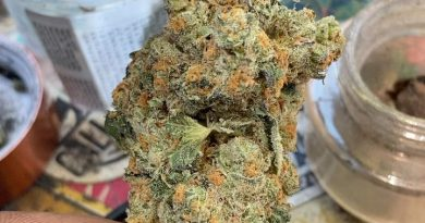 phantom cookies from ca collective strain review by sjweedreview