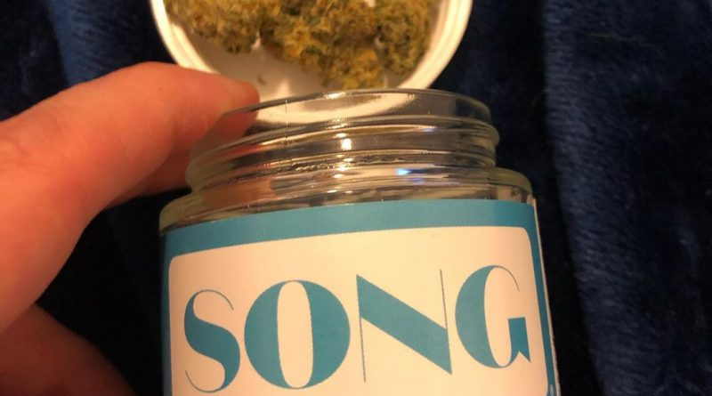 whip it by song wellness strain review by greenbuckeyereviews
