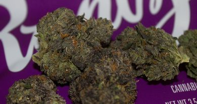 white runtz strain review by bigwhiteash
