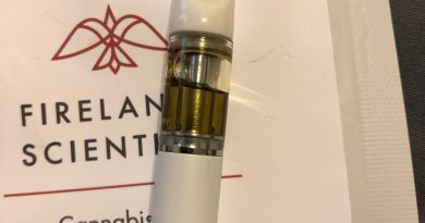 wonka bars rechargeable vape pen by firelands scientific vape review by greenbuckeyereviews