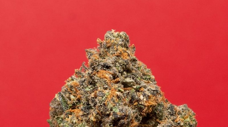 #33 scottie pippen by backpack boyz strain review by thefirescale 2