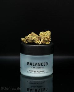 apple crisp by balanced los angeles strain review by thefirescale 2