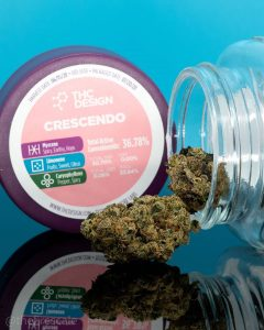 crescendo by thc design strain review by thefirescale