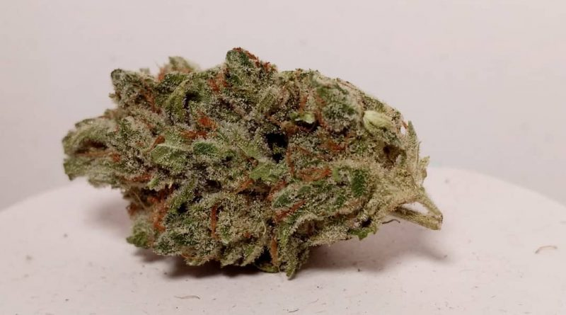 jazz by big beard farms strain review by pdxstoneman 2