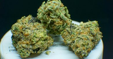 sherbert from trulieve strain review by shanchyrls