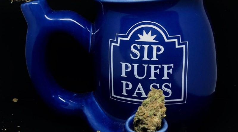 sip puff pass mug pipe glass review by shanchyrls
