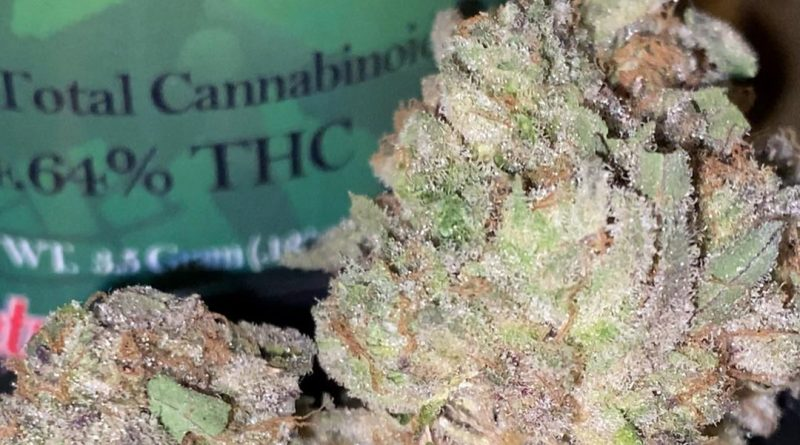 animal mints bx1 by sweetwater pharms strain review by trunorcal420 3