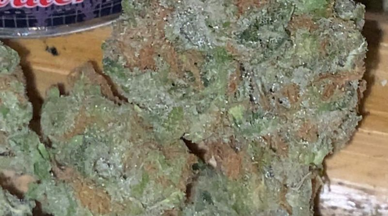 blueberry g by sweetwater pharms strain review by trunorcal420 2