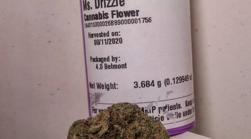 ms drizzle by high winds farm strain review by pdxstoneman
