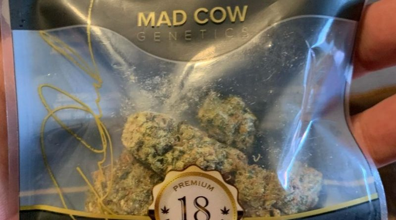 pineapple upside down cake by mad cow genetics strain review by christianlovescannabis