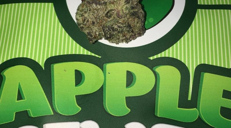 apple gelato by backpack boyz strain review by boofbusters420